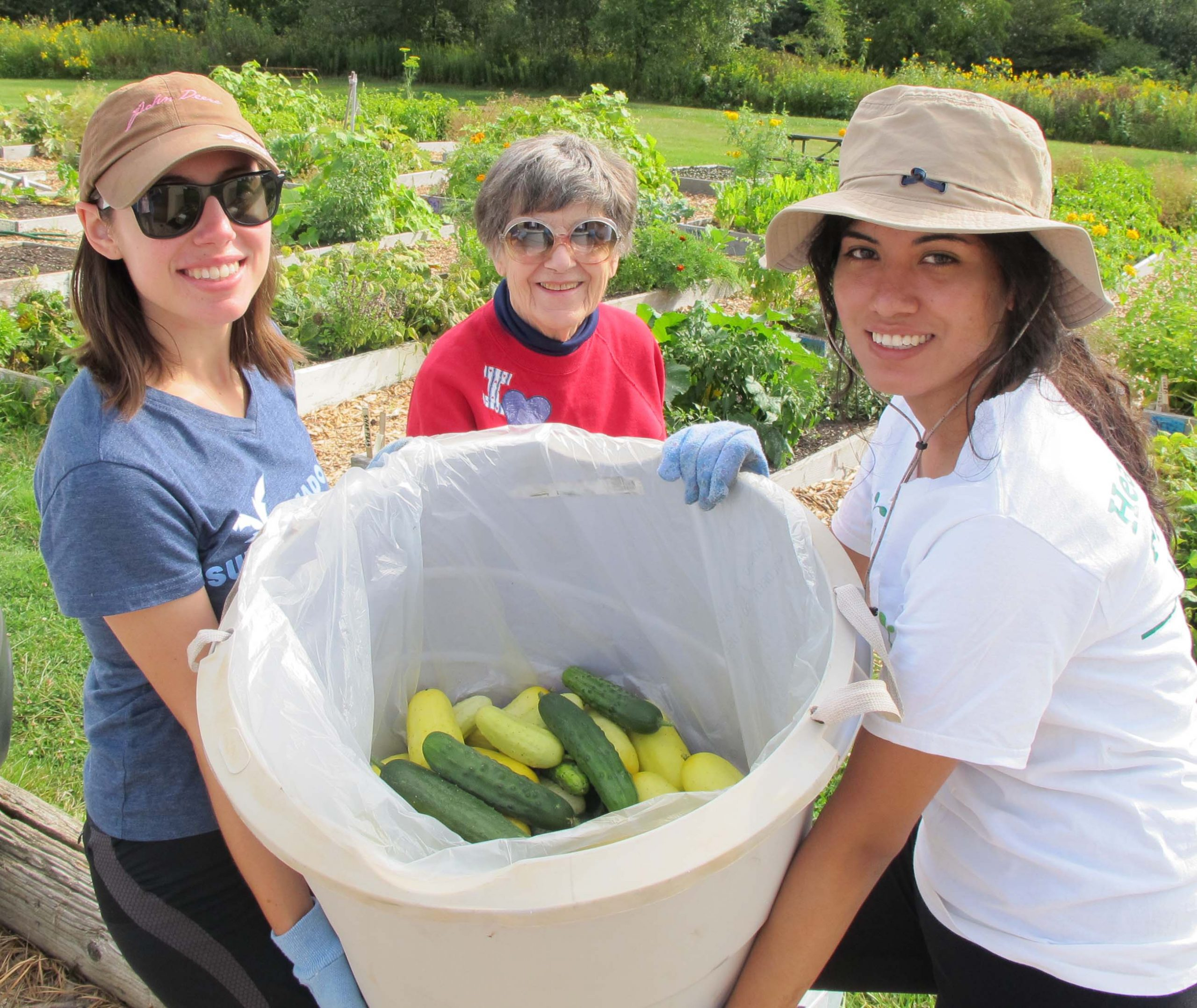 Harvest for Food Pantry